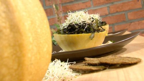 Cuisine vive et maraîcher agroécologique...