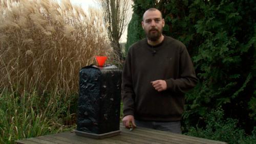Retour sur l'évolution de la pousse de nos champignons