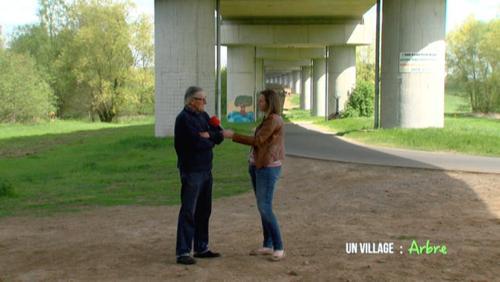 Arbre: Un village encerclé par les trains