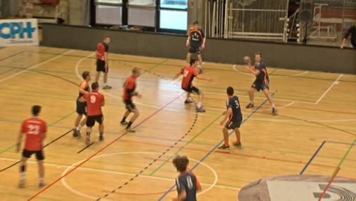 Handball : l'équipe B de l'Estu se maintient en LFH