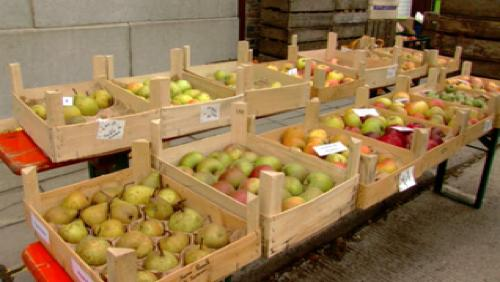 Les pommes (et poires) sont à l'honneur