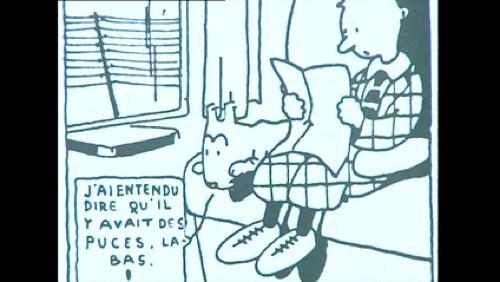 Archives 1999 : A la rencontre de l'archiviste des aventures de Tintin, Etienne Pollet