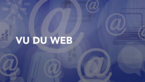 Vu du Web - 13/01/17