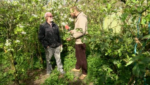 Le groupe de jardinage des fraternités ouvrières de Mouscron