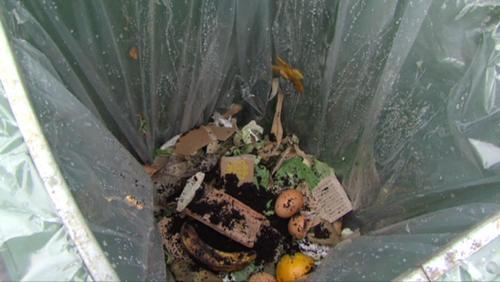 IPALLE: expérience pilote de recyclage des déchets organiques