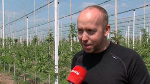 Impact des gelées tardives sur les productions de fruits, rencontre aux vergers de Barry
