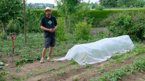Comment placer un filet anti-insecte correctement