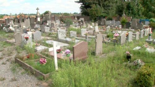 Le cimetière envahi par la végétation
