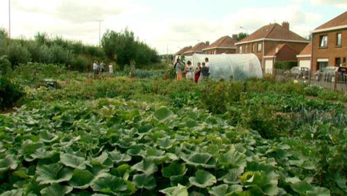 Les jardins partagés ouvrent leurs portes