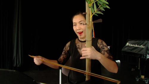 Rencontre entre tradition Vietnamienne et musique contemporaine.