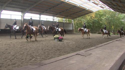 Week-end du cheval à la ferme du Parc