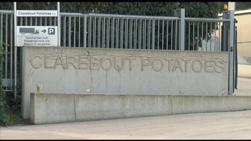 Que se passe-t-il à Clarebout Potatoes?