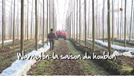 la saison du houblon - 04/06/13