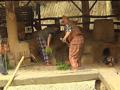 Les petits ruisseaux : l'archéosite d'Aubechies - 29/11/08