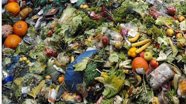 Cap Zéro Déchet - Le gaspillage alimentaire