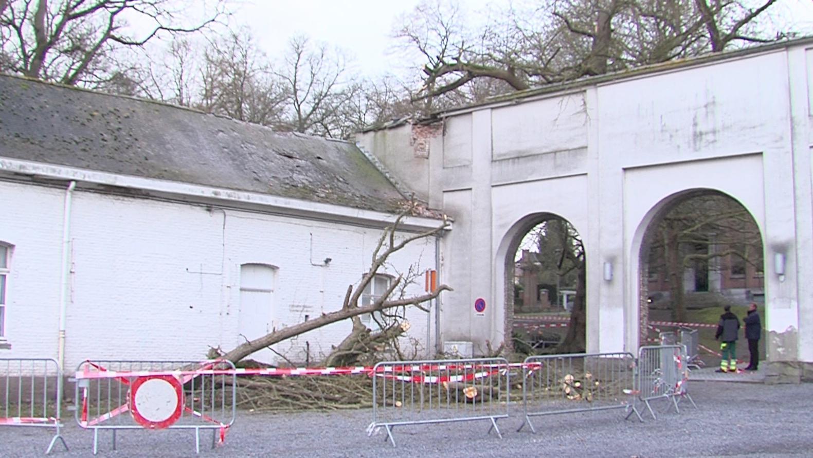Un arbre brisé par le vent abîme les arcades de l'hôtel de ville de Tournai