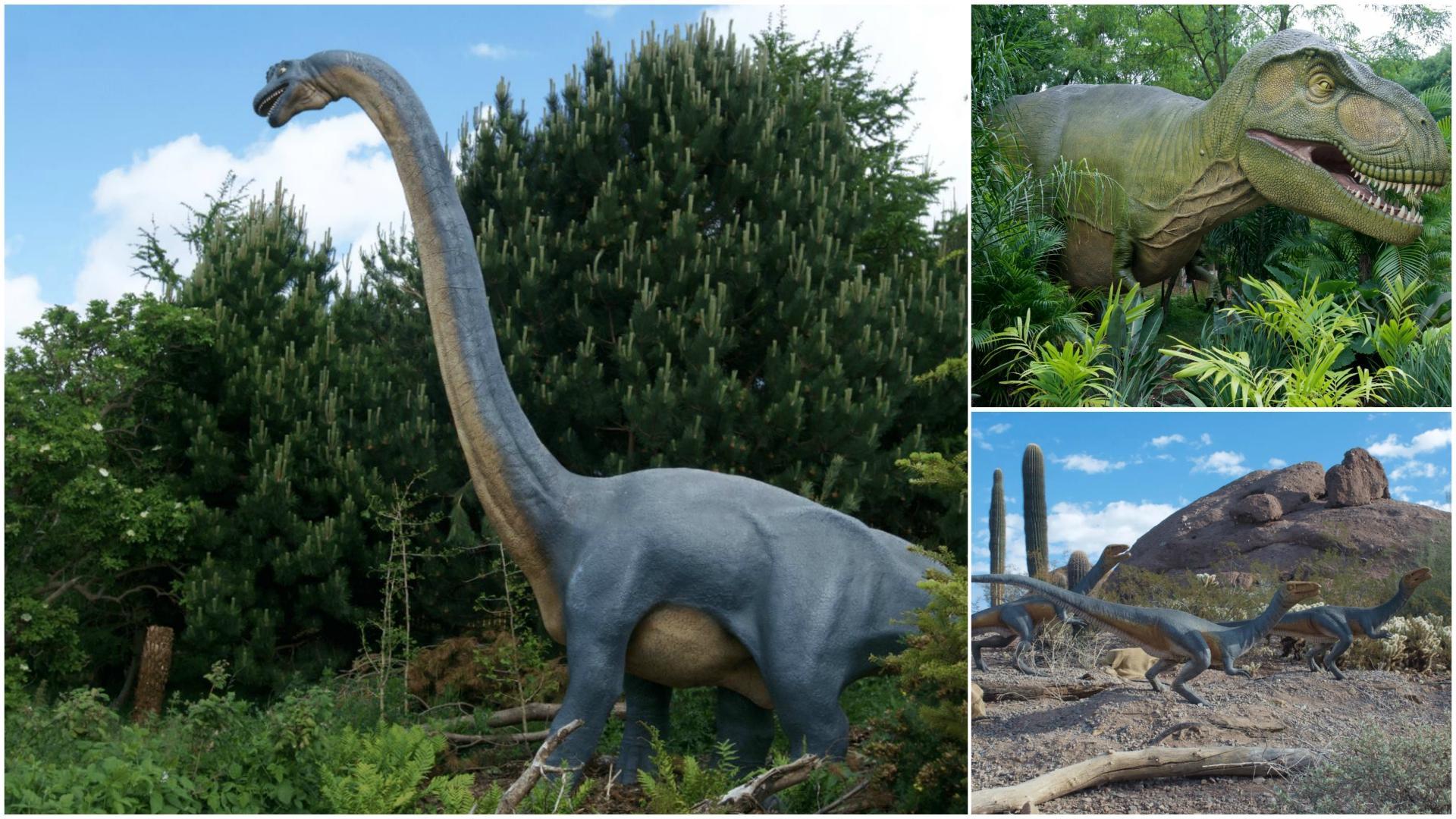 14 dinosaures vont débarquer à Pairi Daiza