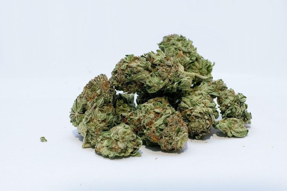 Le professeur suspecté de vendre de la drogue mis sous mandat d'arrêt