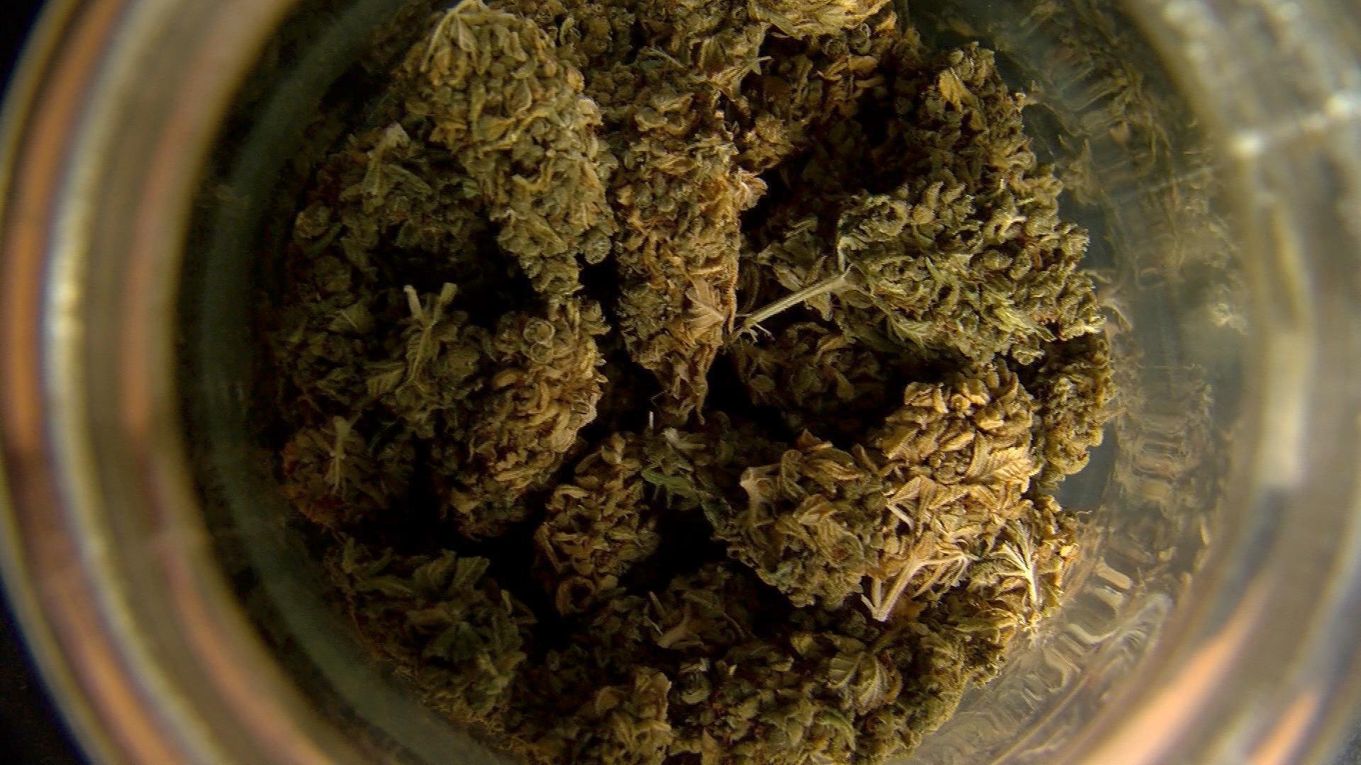 Pas de cannabis thérapeutique à Enghien