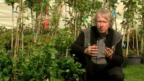 Marc Knaepen nous explique les jardins durables
