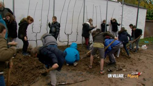 Plantations de pommiers à l'école communale en immersion