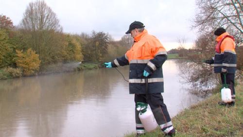 Pollution dans la Lys : Clarebout est responsable