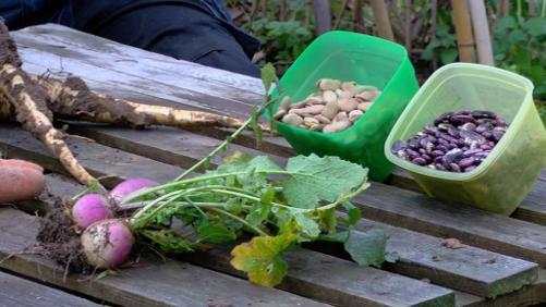 Comment conserver ses légumes ?