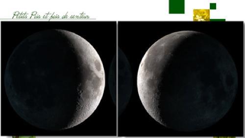 Retour sur les bienfaits de la lune au jardin