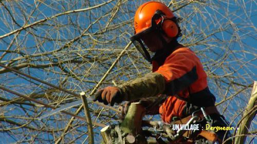 Manu, l'homme qui aimait les arbres
