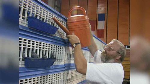 Le colombophile Franky Delbecque est décédé