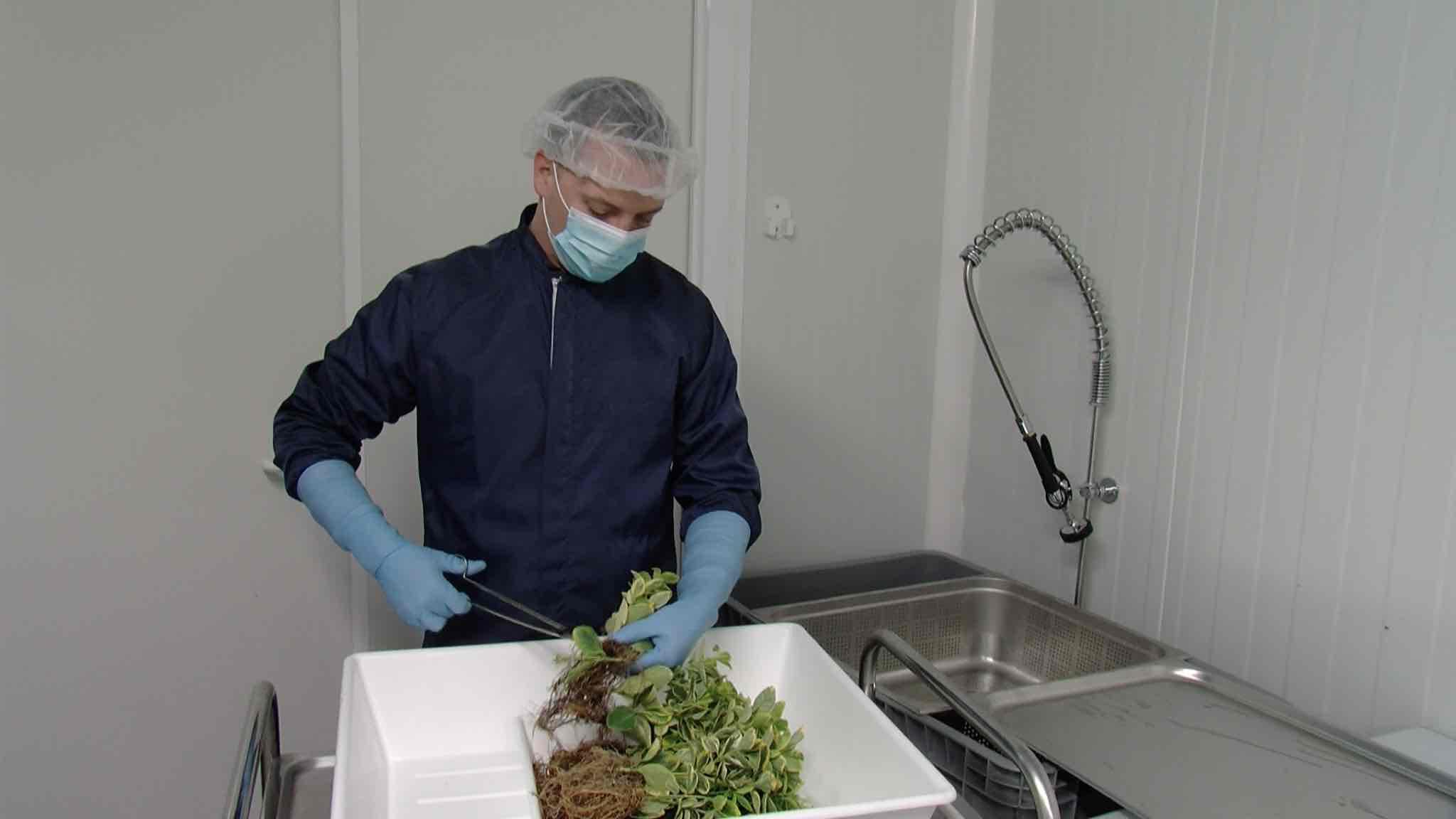 Green2chem, une entreprise de compléments alimentaires