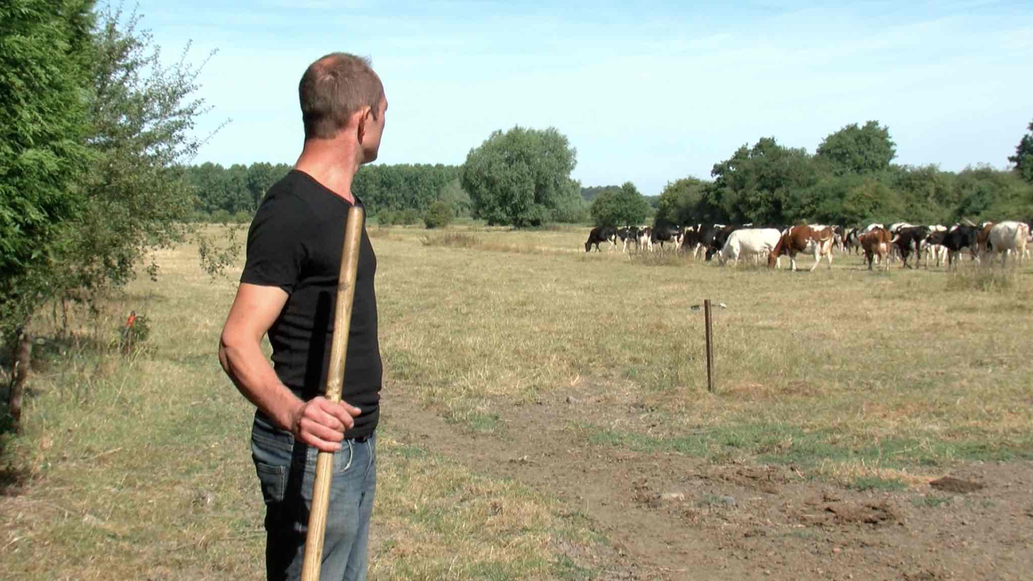 Deux éleveurs nominés pour le concours de la plus belle prairie