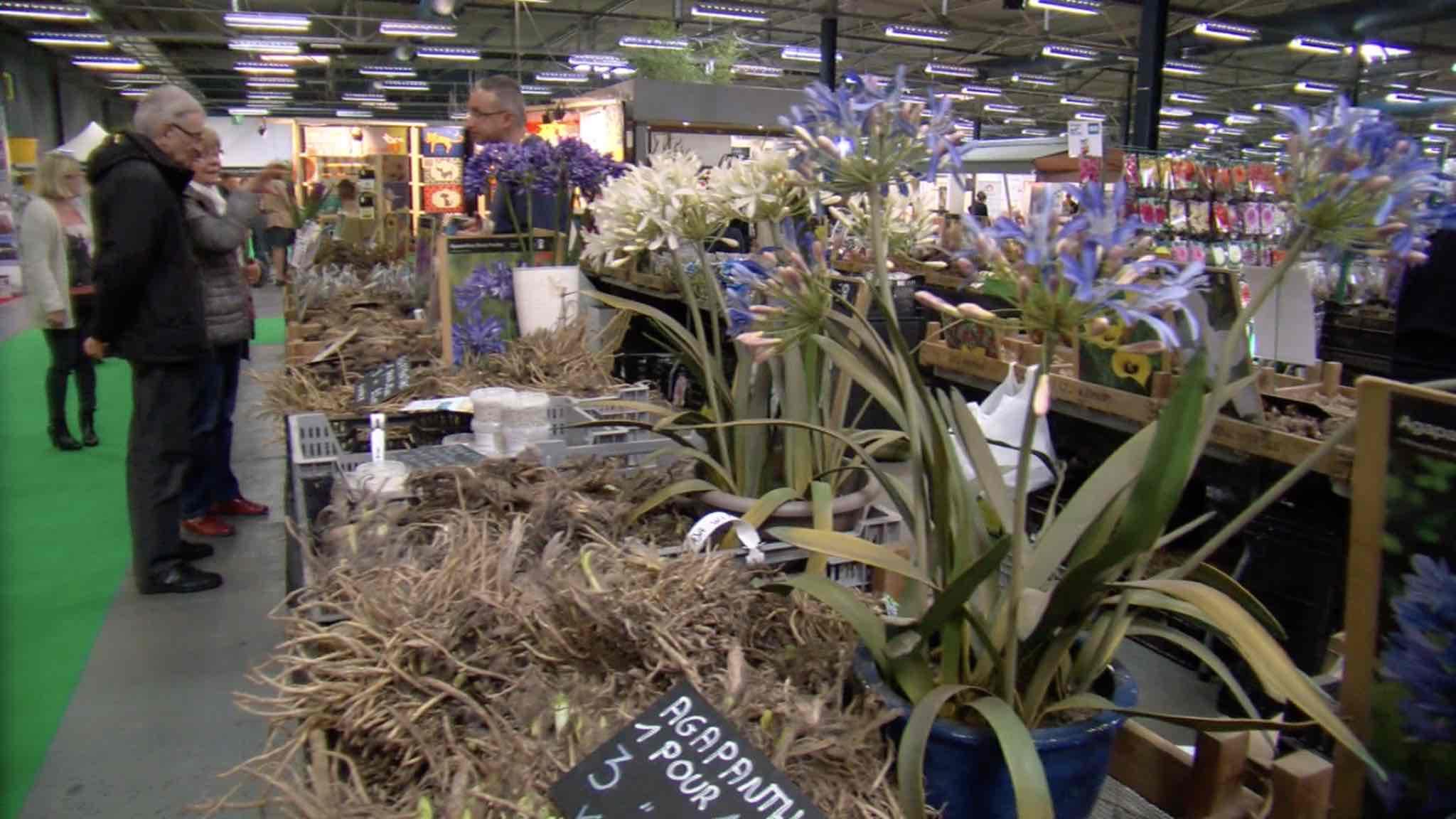 Tout savoir sur le 15ème salon Déco et Jardin à Tournai Expo